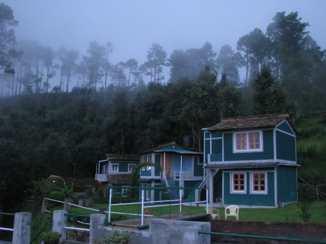 Binsar Is A Small Town In The State Of Uttarakhand And Located Amidst Dense Green Forests It Famous For Wildlife Sanctuary